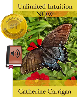 Unlimited Intuition NOW (Audio Book - MP3)